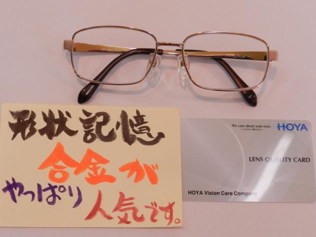 DSCN0602[1]